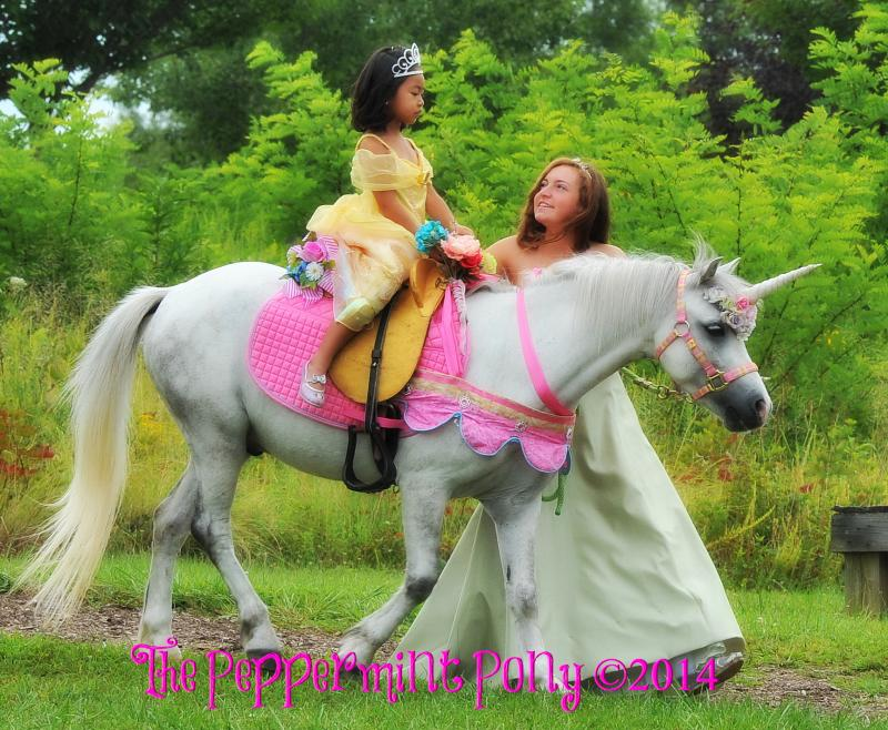 Maryland's Best Children's Parties, The Peppermint Pony Premier Party Services