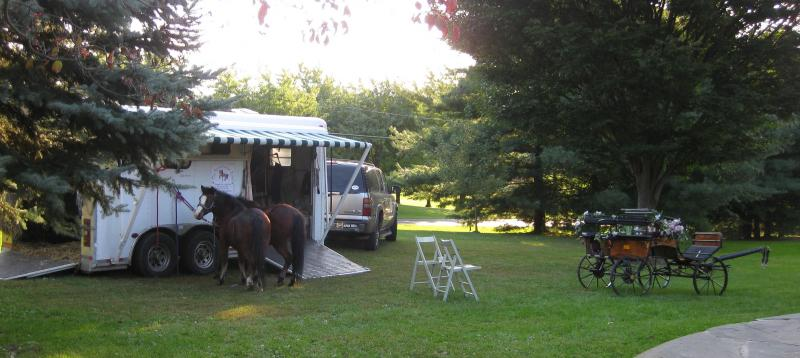 pretty white horse trailer and ponies standing tied, with carriage in front yard